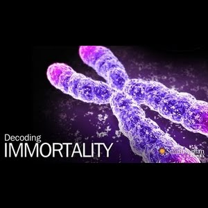 Decoding Immortality