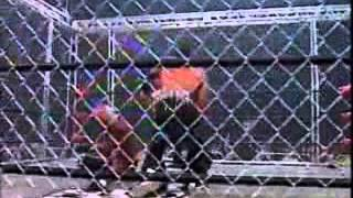 Hollywood Hogan Vs Randy Savage WCW Uncensored 1998