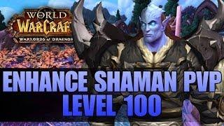 Warlords Of Draenor (Beta): Level 100 Enhancement Shaman