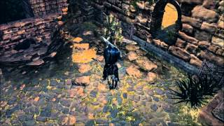 Dark Souls Ornstein vs Artorias vs Ciaran vs Hawkeye Gough