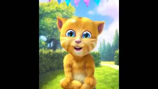 Ginger Cat Sings ABC SONG   ABC Songs for Children