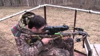 Охота на кабана не всегда заканчивается выстрелом