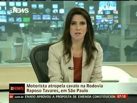 Motorista Atropela Cavalo Na Rodovia Raposo Tavares - Interior De São Paulo