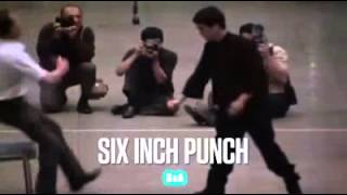 Bruce Lee Strength One And Six Inch Punch HD