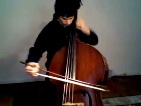 YouTube Symphony 2011 | Principal Bass Audition