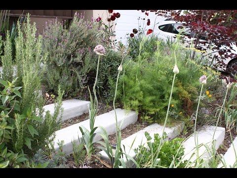 GARDEN TOUR: Front Yard Permaculture Garden