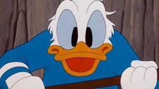 Káčer Donald - Zimné zásoby