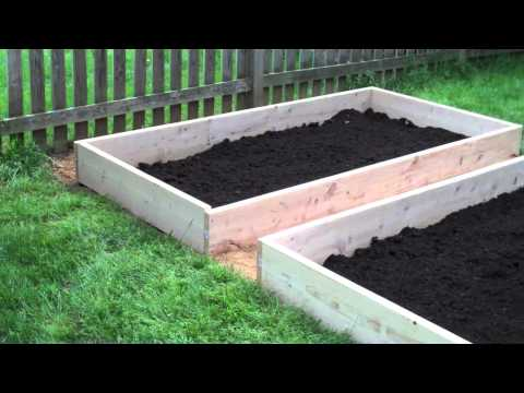 How to Build a Raised Vegetable Garden For Babies, Toddlers, and Kids : Vegetable Field of Dreams