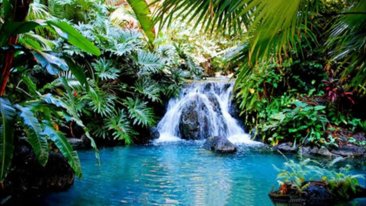 Healing pool meditation youtube for Garden state pool scene quote