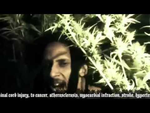 Julian Marley Boom Draw - Legendado PT BR