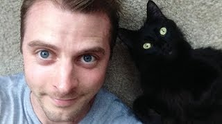 [A Cat's Guide to Loving a Human] Video