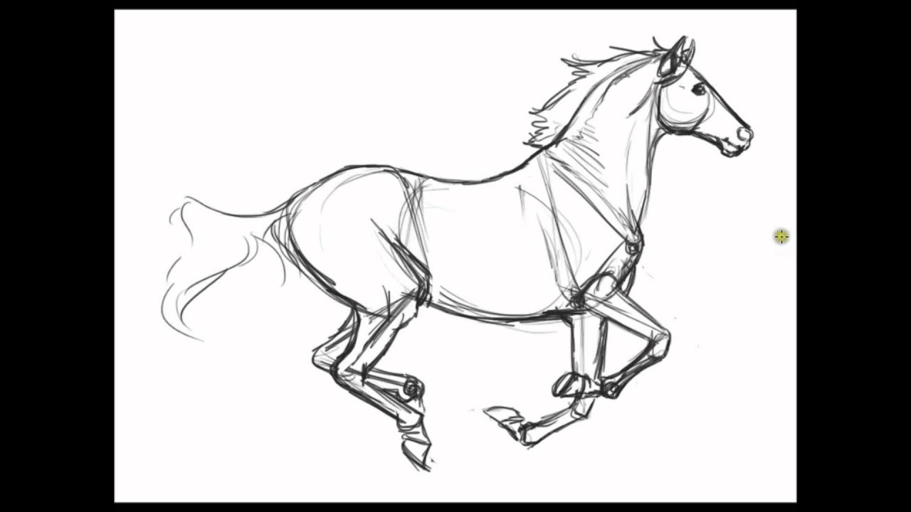 Free Coloring Pages Of Horses Realistic