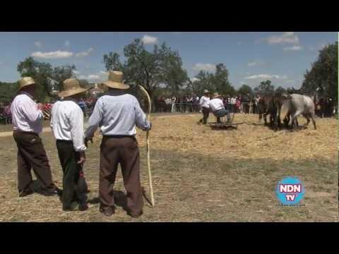 Nuestras Tradiciones - Pedroche 2012
