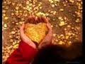é Por Amor Alexandre Pires
