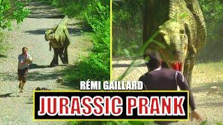 Pozor Tyranosaurus!