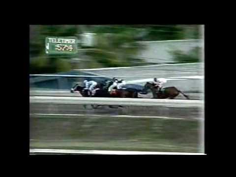 NEW HARMONY - Vence a Moment Of True - Mayo 1994