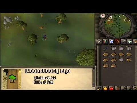 Admitting To Botting On Runescape