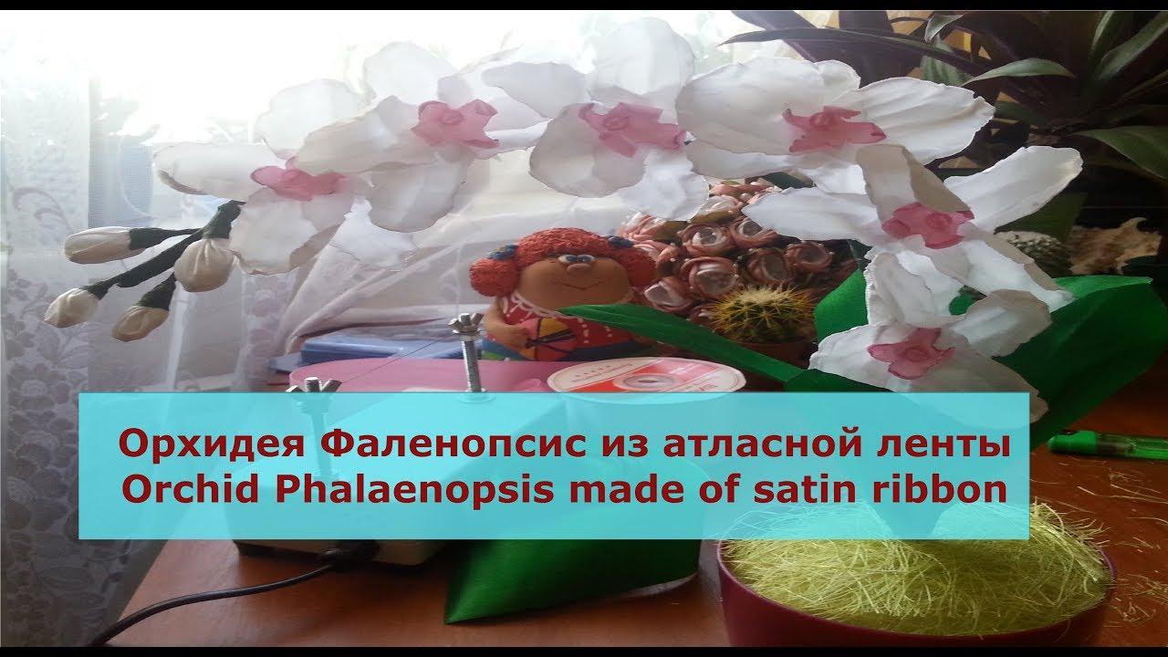 Орхидея из атласной ленты и своими руками 876