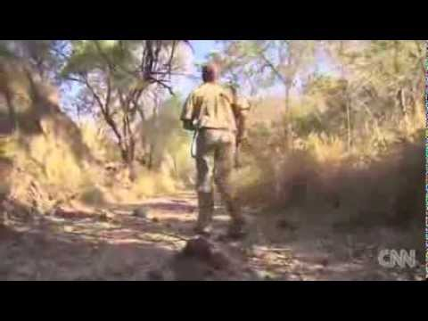 CNN - Saving South Africa's rhino