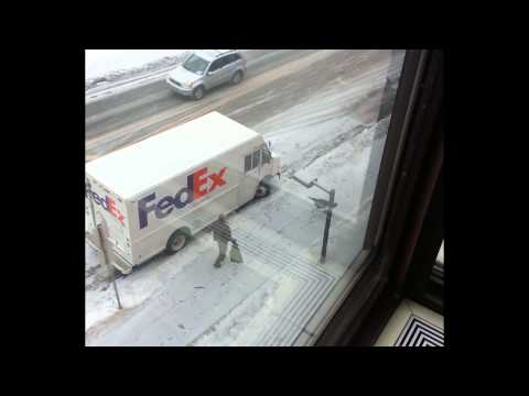 Wild Turkey vs. UPS Driver (winter edition)