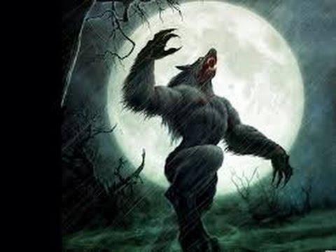 """""""Người sói"""" cao 2 mét xuất hiện ở Anh"""