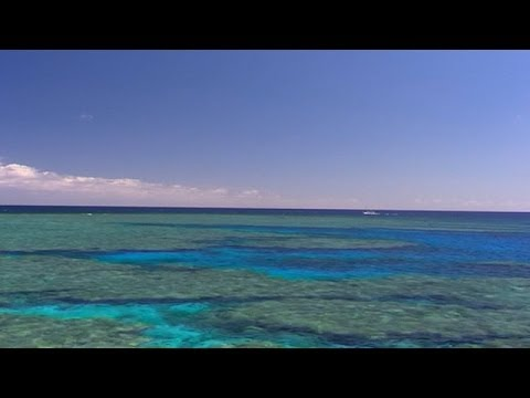 Great Barrier Reef Dumping Debate Set for UNESCO Showdown