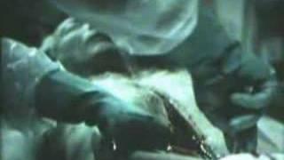 Autópsia - Jogos mortais 4 (Saw IV) view on youtube.com tube online.