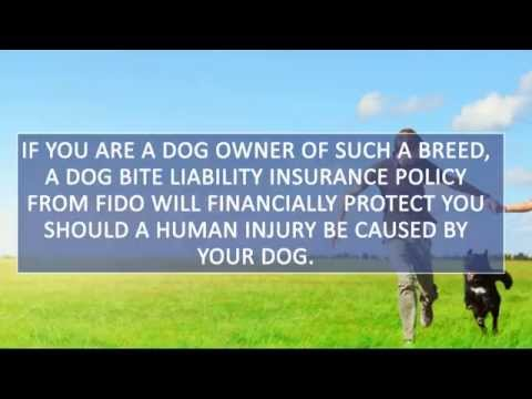 Dog Bite Liability: Homeowners Insurance