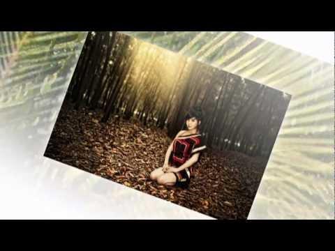 Đợi em trong mơ-Ngàn năm vẫn đợi - Đàm Vĩnh Hưng (remix)