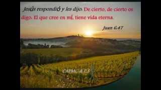 1 HORA Y MAS DE ADORACION Y ALABANZAS MUSICA CRISTIANA