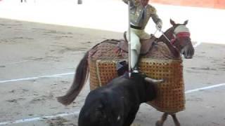 Spanish Bull-Fight Horse Attacked