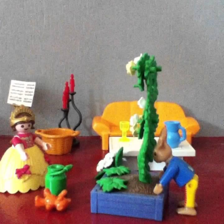 Playmobil La Princesse Cherche Un Prince Youtube
