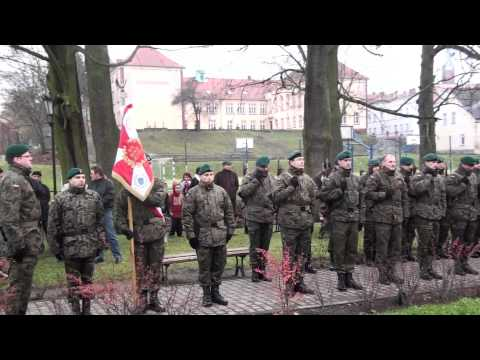Polish 21 Gun Salute Gone Wrong