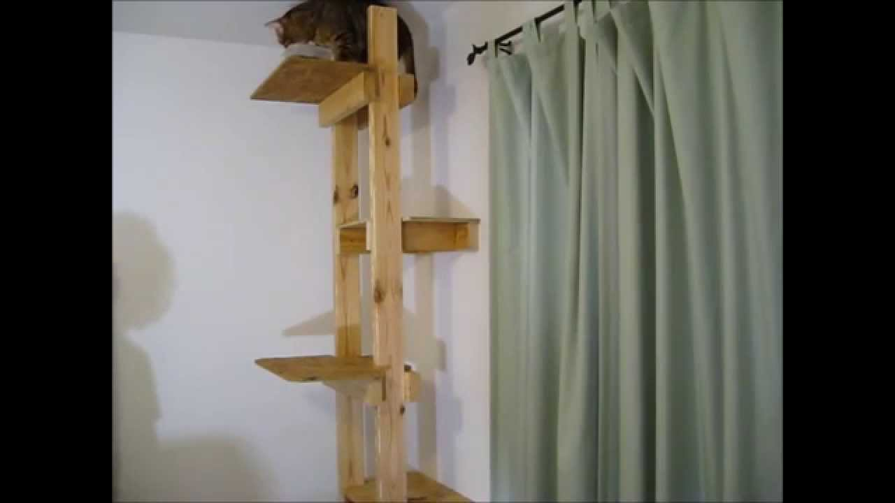 How to build a cat tree or ladder youtube for How to build a cat perch