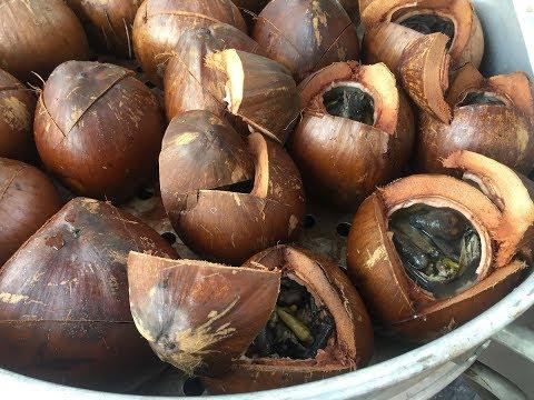 Gà ác tiềm ớt hiểm trái dừa lạ miệng rất thơm ngon và bổ dưỡng - Tin tức mới