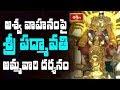 అశ్వ వాహనంపై శ్రీ పద్మావతి అమ్మవారి దర్శనం || Padmavathi Ammavari Brahmotsavam || Bhakthi TV