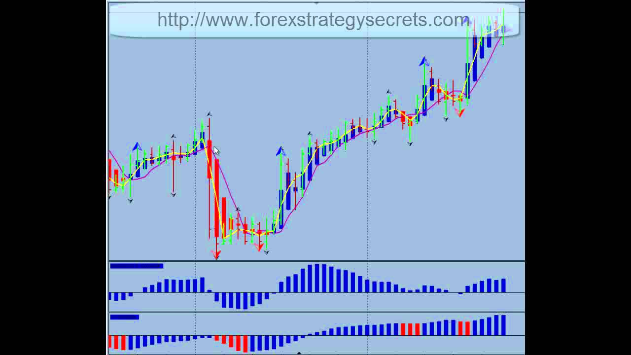 free forex trading real account