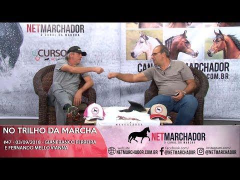 #46 NO TRILHO DA MARCHA - 27/08 - GIANFRANCO FERREIRA E FERNANDO MELLO VIANNA -MANGALARGA AMRCHADOR