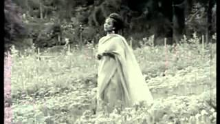 """Buzunesh Bekele - Addis Fikir """"አዲስ ፍቅር"""" (Amharic)"""