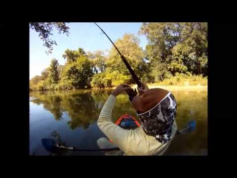 River Fishing On the SUPerFISHal
