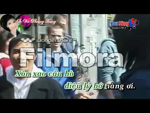 karaoker thuong nhau ly to hong   song ca voi  cam ly