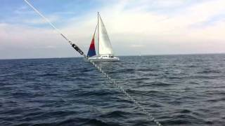 Sailing Catamaran Louisiane