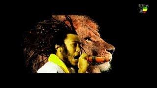 """Ras Biruk - Bizu Were """"ብዙ ወሬ"""" (Amharic)"""
