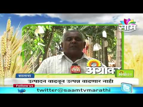 Production of poison free foodgrain necessity:  Organic farming expert  Bapurav Korde
