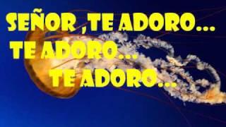 Juan Carlos Alvarado (magnifico Dios) Letra