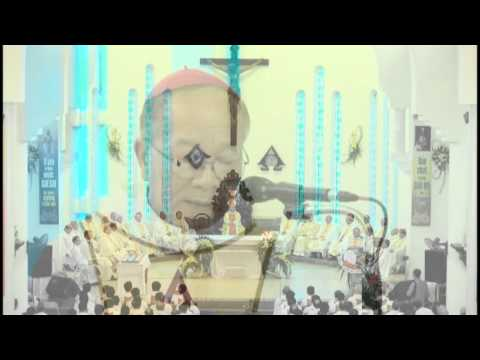 Thánh lễ Tấn phong Giám mục phụ tá GP Hưng Hóa Anphong Nguyễn Hữu Long tại Sơn Tây. phần 2