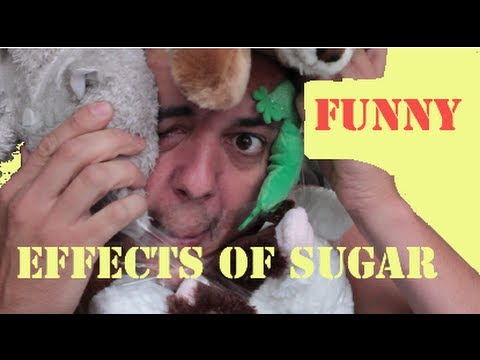 The Sugar Experiment