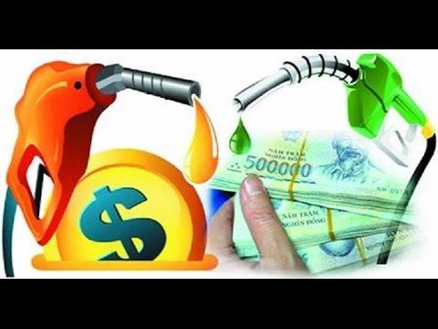 Không tiền mua xăng ( chế bài Không cảm xúc )