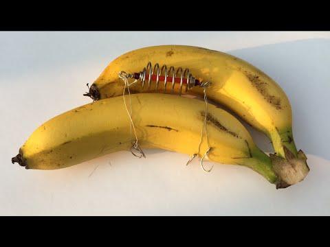 How to Hook Banana - Carp Bait(12)DIY - Fishing Tips - Móc Chuối Câu Cá Chép