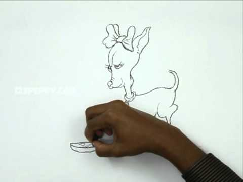 How to Draw a Small Girl Dog - YouTube
